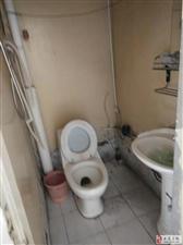 双丰小区2室1厅1卫700元/月