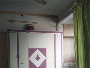 交管巷3室2厅1卫700元/月