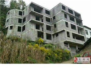 自建房出售或出租,也可单套售卖,占地450平方米,急需用钱,价格便宜