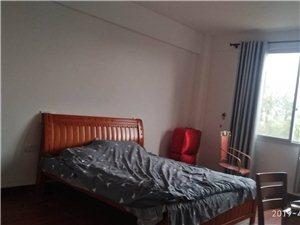丰田大厦(琴岗路22号)1室1厅1卫300元/月