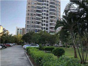 海桂芳双学区房,高层精装,4房两厅出售