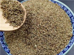 芹菜籽粉降血壓良藥純天然芹菜籽打粉批發