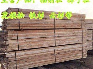 信陽建筑木方生產廠家