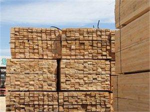 信陽建筑木方加工廠
