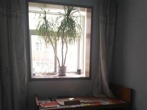 海岱南苑2室2厅1卫1300元/月