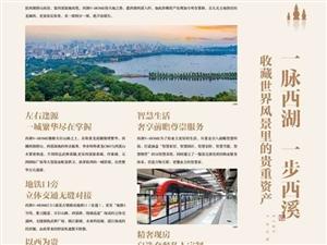 杭州西湖——【VHOME】——官方网站——售楼处