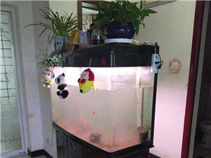 鱼缸160*80