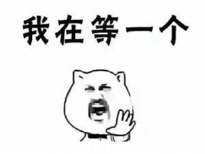 凤山学府每平方仅售14500128.7平方