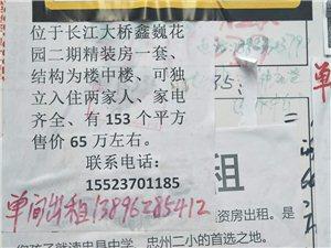 鑫巍花园二期精装楼中楼出售