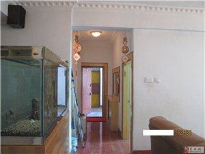 住房出租3室2厅1卫1000元/月