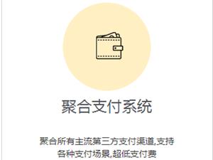 API聚合支付系统出售,你提供想法,我提供代码