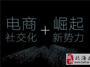 2019杭州社交电商新零售展览会