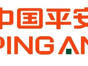 中国平安金融保险服务