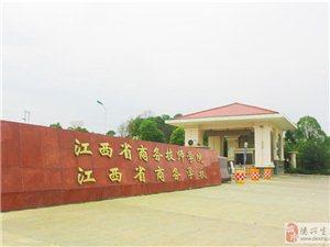 南昌商務學校占地面積多少畝?