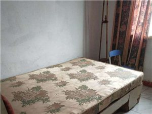 真武小区2室2厅1卫500元/月