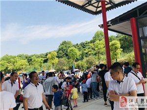 武汉公司团建,乐农湖畔这三大好玩你了解吗?