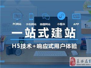 網站/小程序OEM代加工合作,藍暉科技邀您攜手共贏