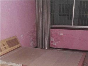 鴻海-金鉆旁邊2室房屋出租