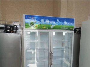 立式展示柜飲料冷藏柜雙開門冷藏柜