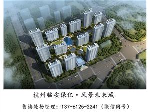 杭州临安【保亿风景未来城】有升值潜力吗;有什么吸引