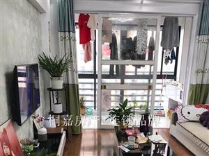 银杏公寓电梯房精装地段优,精装两居拎包入住