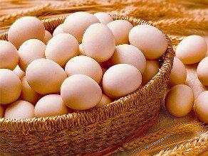 福州土雞蛋-土雞蛋采購批發供應-福州土雞蛋送貨上門