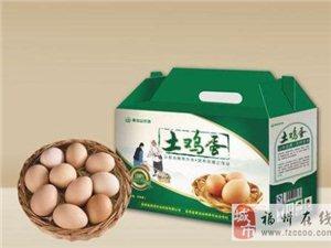 福州土雞蛋批發供應-農村散養土雞蛋,福州土雞蛋價格