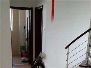 福华里(福华里)3室2厅1卫2400元/月
