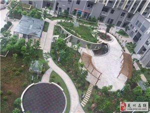 港晟豪庭3室2厅2卫76.8万元