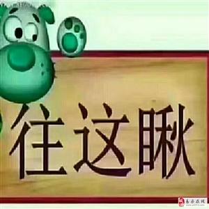 惠东花园2室2厅1卫1000元/月