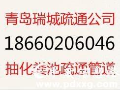 �R西��I清理化�S池、��I抽化�S池81860707