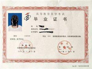 廣州大學 自考本科 專升本 會展管理專業 考試簡單