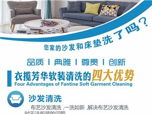 沙发、窗帘、地毯和床垫的上门清洗和保养
