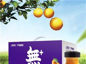湖南海聯食品有限責任公司現誠招駐馬店地區各縣、市代