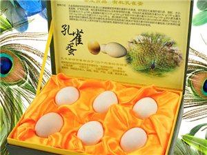 德成孔雀生态养殖场有孔雀苗和种孔雀出售