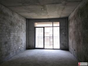 桐中旁边,龙眠河畔金凯大都会,电梯房,大3室,采光好