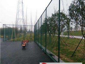 篮球场围网@大悟篮球场围网@篮球场围网厂家现货厂家