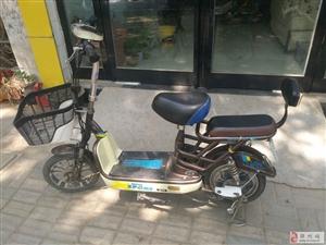 多辆二手电动车摩托车在售