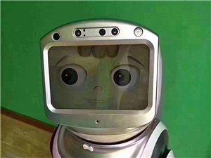 小���C器人低�r出售