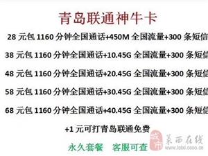 青�u�通��N套餐28元包1160分�+7.45g