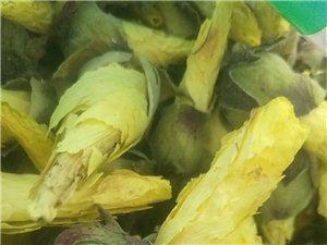 黃蜀葵花正品供應 黃蜀葵花哪里能買到多少錢
