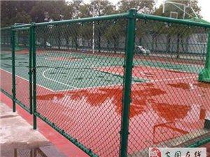 球場專用圍欄網@岱岳球場專用圍欄網廠家特價定做