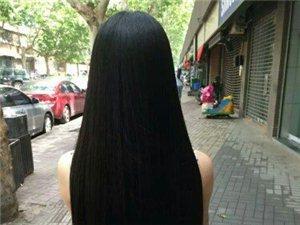 生发·防脱·养发洗发液