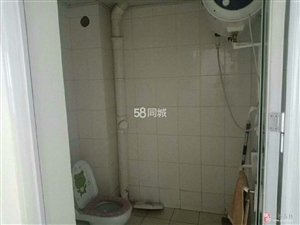 三鼎�光城1室1�d1�l700元/月