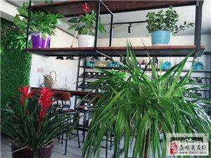 东湖明珠花园3室2厅2卫5000元/月