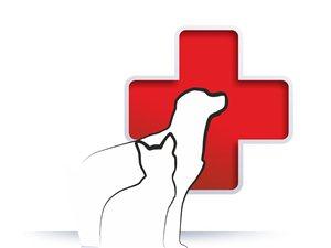 金沙平台网址县宠物门诊医院在哪里,电话多少,哪家好