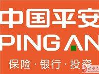 中国平安平安福成人和少儿款产品热卖中