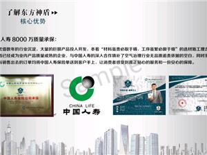 中国十大除醛品牌之一东方神盾8000W保险担保