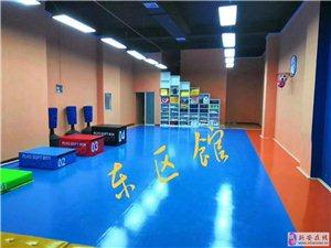 精英跆拳道素質教育暑假班開始招生了
