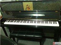 淄博張店買鋼琴去哪個琴行好